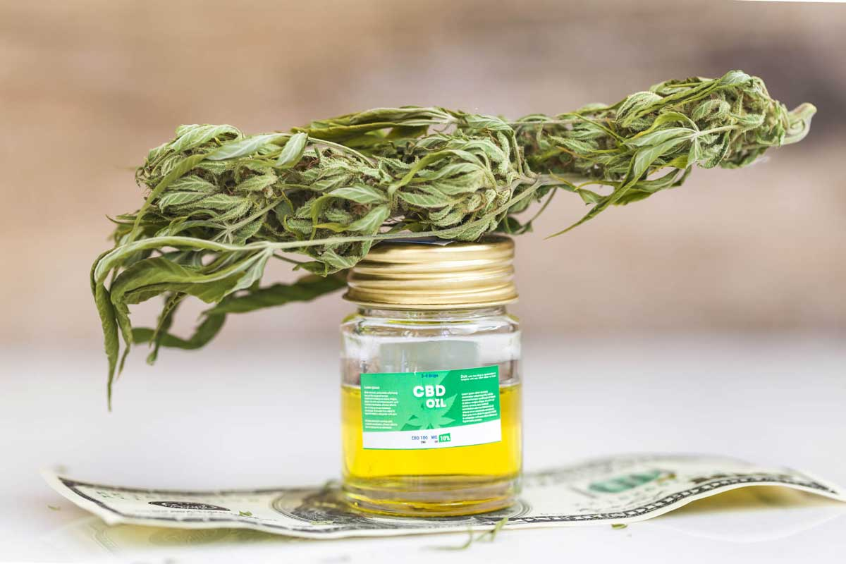 Organic and Non-Organic CBD, How They Matter?